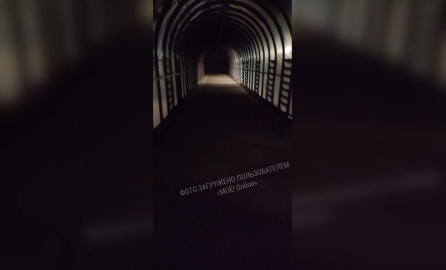 Воронежцы боятся ходить по тёмному надземному переходу на Московском проспекте